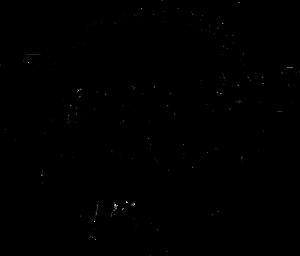BITS_Logo