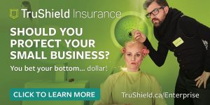 Insurance for small business_May 29